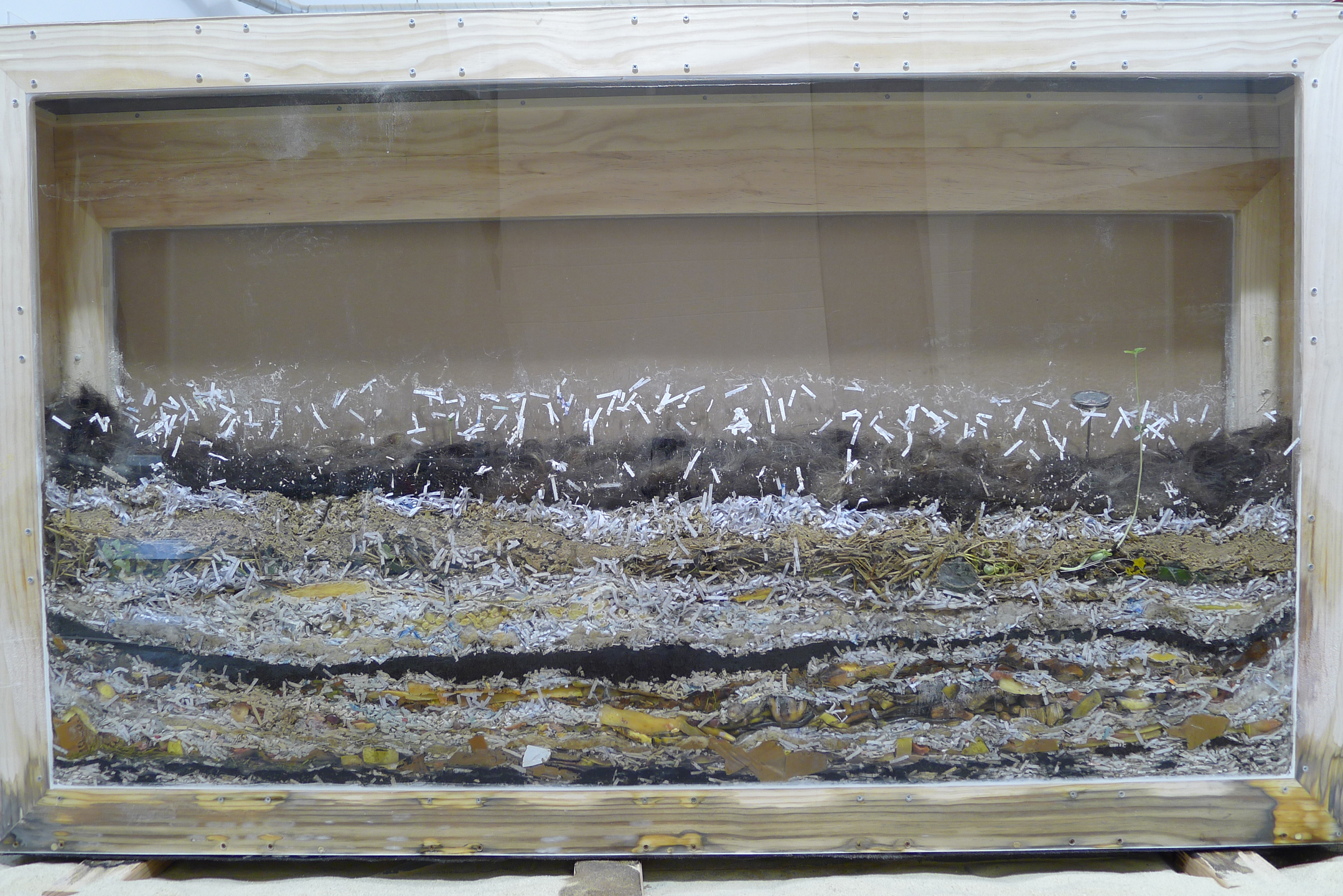 Indoor Compost Box - Temple University | Crazy About Compost